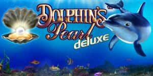 DolphinsPearlDx_Ov_0