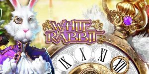 white-rabbit-slot-big-time-gaming-review